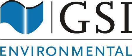 GSI Environmental Inc.