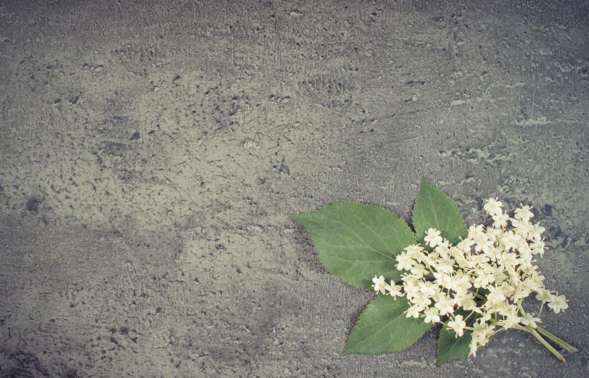 Sustainable Green Concrete, Concrete Forming, Pouring Concrete